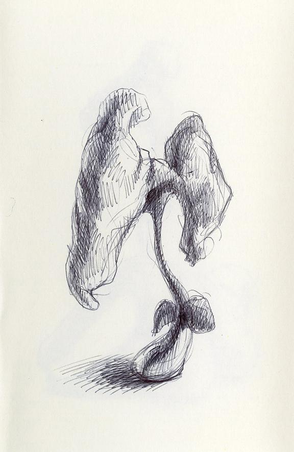 Sketch231_.jpg