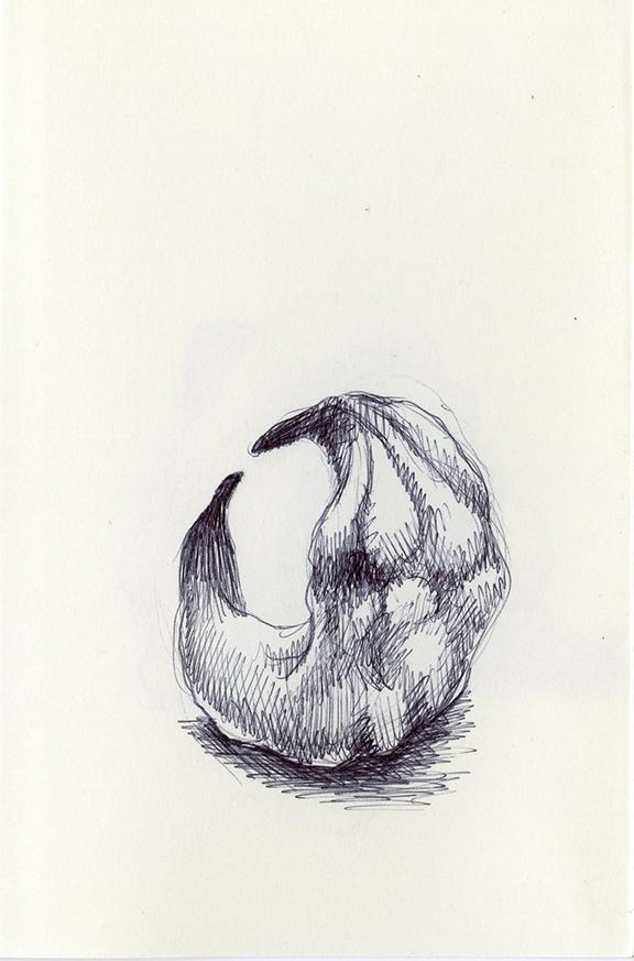 Sketch252_.jpg