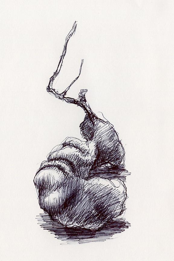 Sketch070_.jpg