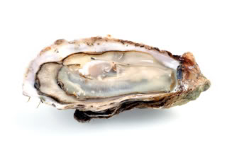 Running With Forks Injury Recovery Oysters
