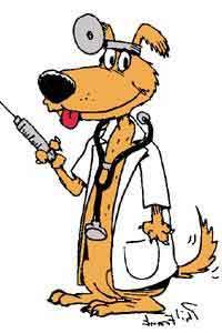 dog_vaccine.jpg