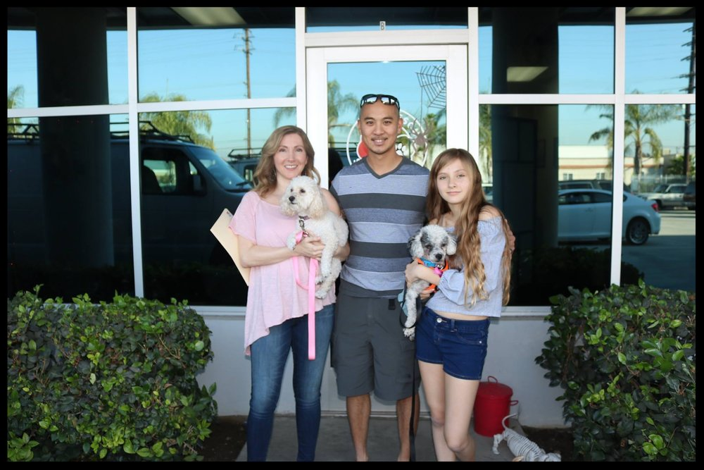 Kika's Adoption Day.jpg