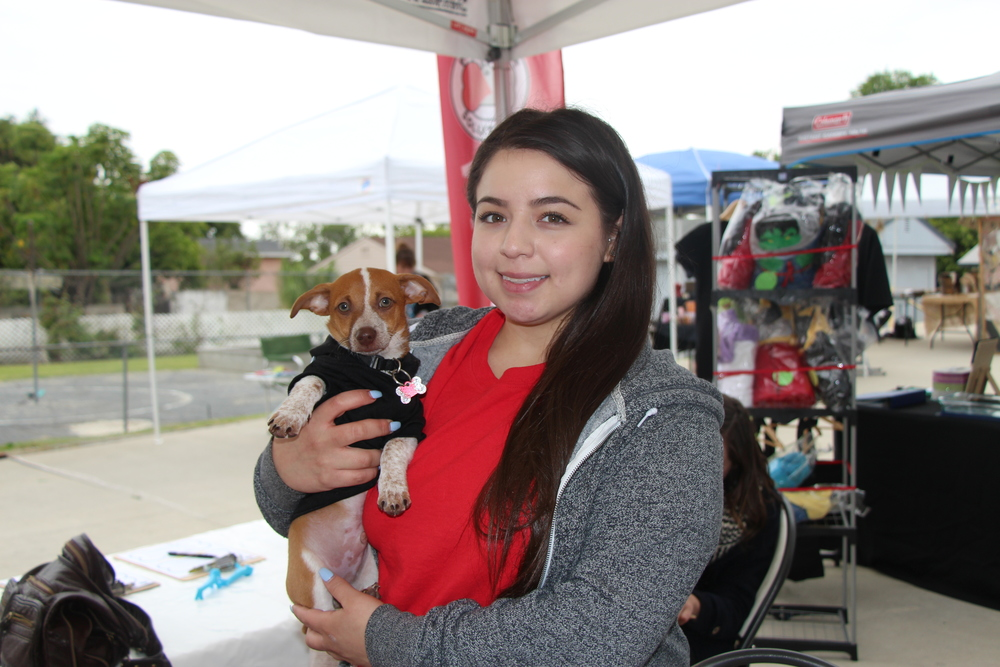 Sabrina GonzalezI have five dogs and they are my babies! I rescued 3 from Pet Rescue Solutions. I have been working here for 3 years and we truly find the best homes for these pets in need. -