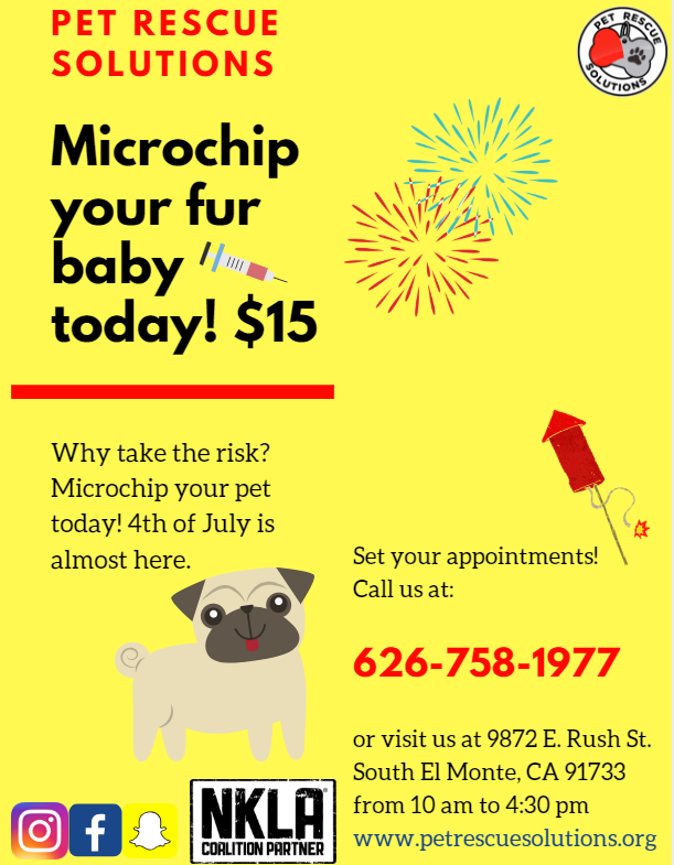 Microchip Flyer New with NKLA.PNG