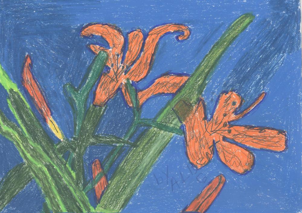 Roadside Lilies