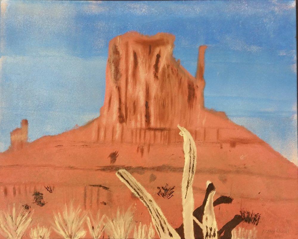 """Sunny Desert"" VSA 2018 State Tour"