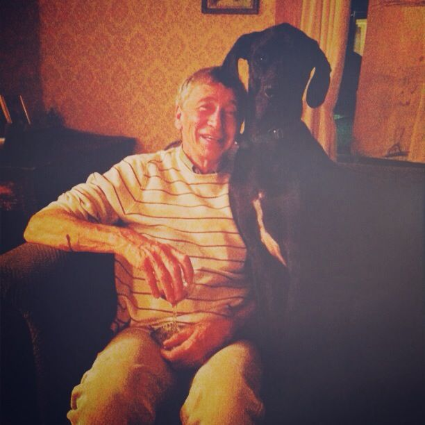 dad-and-great-dane