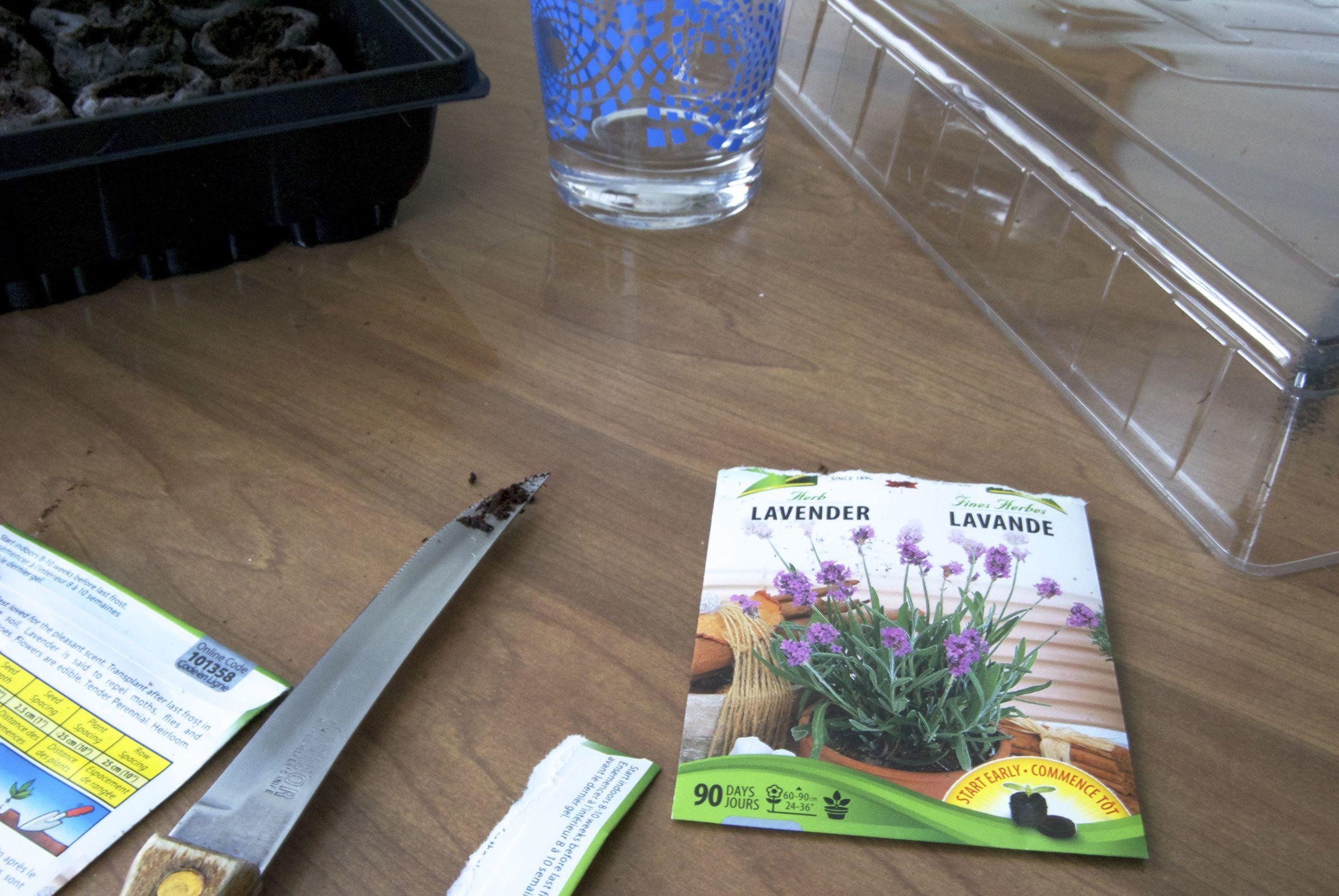 lavender-seeds