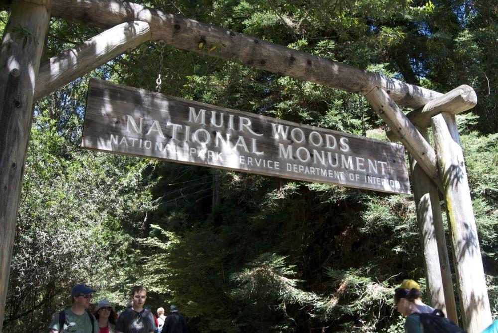muirwoodsnationalmonument
