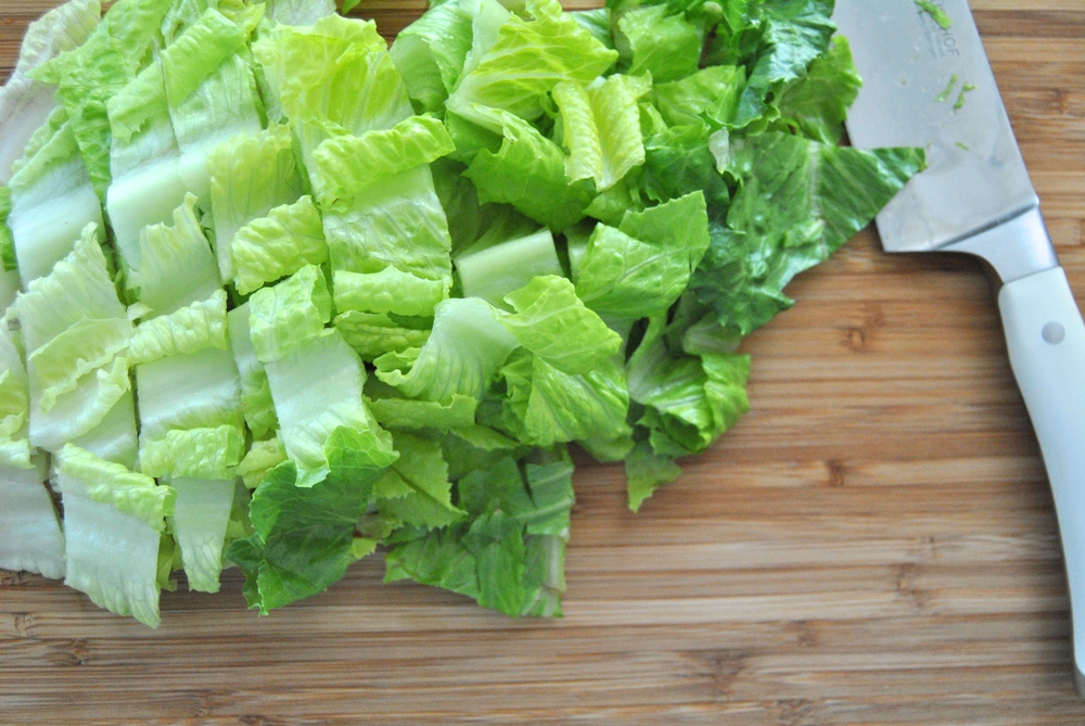 nectarine-chicken-cilantro-salad.jpg