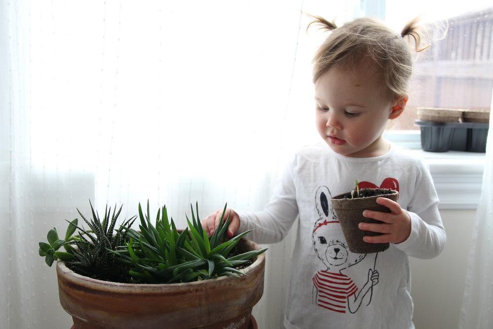 Toddlergrowing.jpg