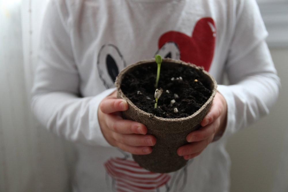 plantingwithatoddler.jpg