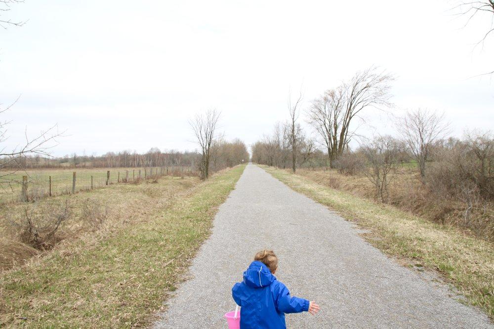 nature_walk.jpg