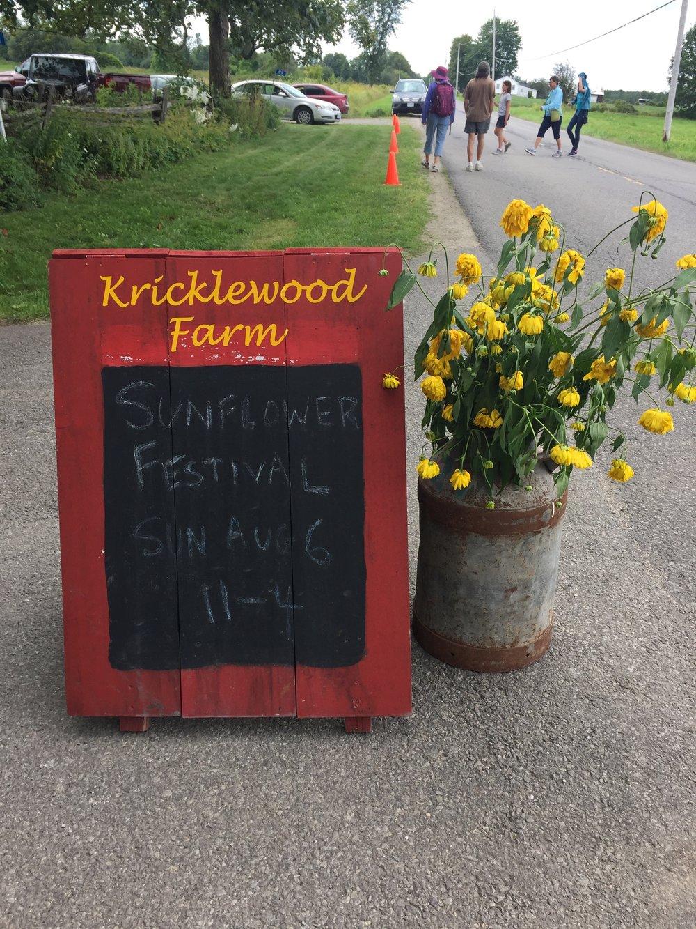 sunflower_festival.jpg