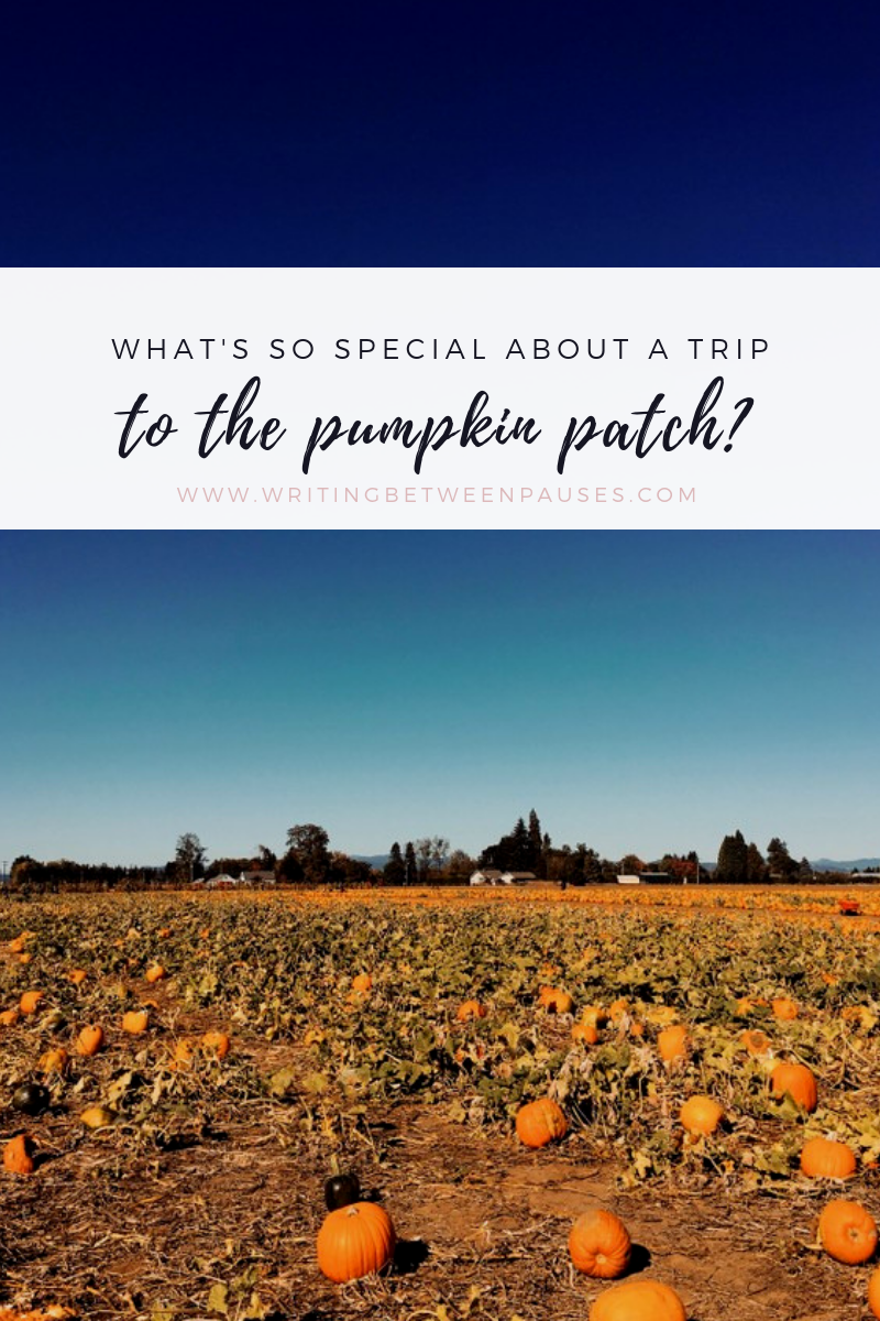 What's So Special About a Trip to the Pumpkin Patch? | Writing Between Pauses