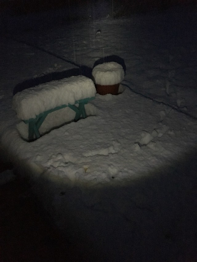 Snow in Oregon