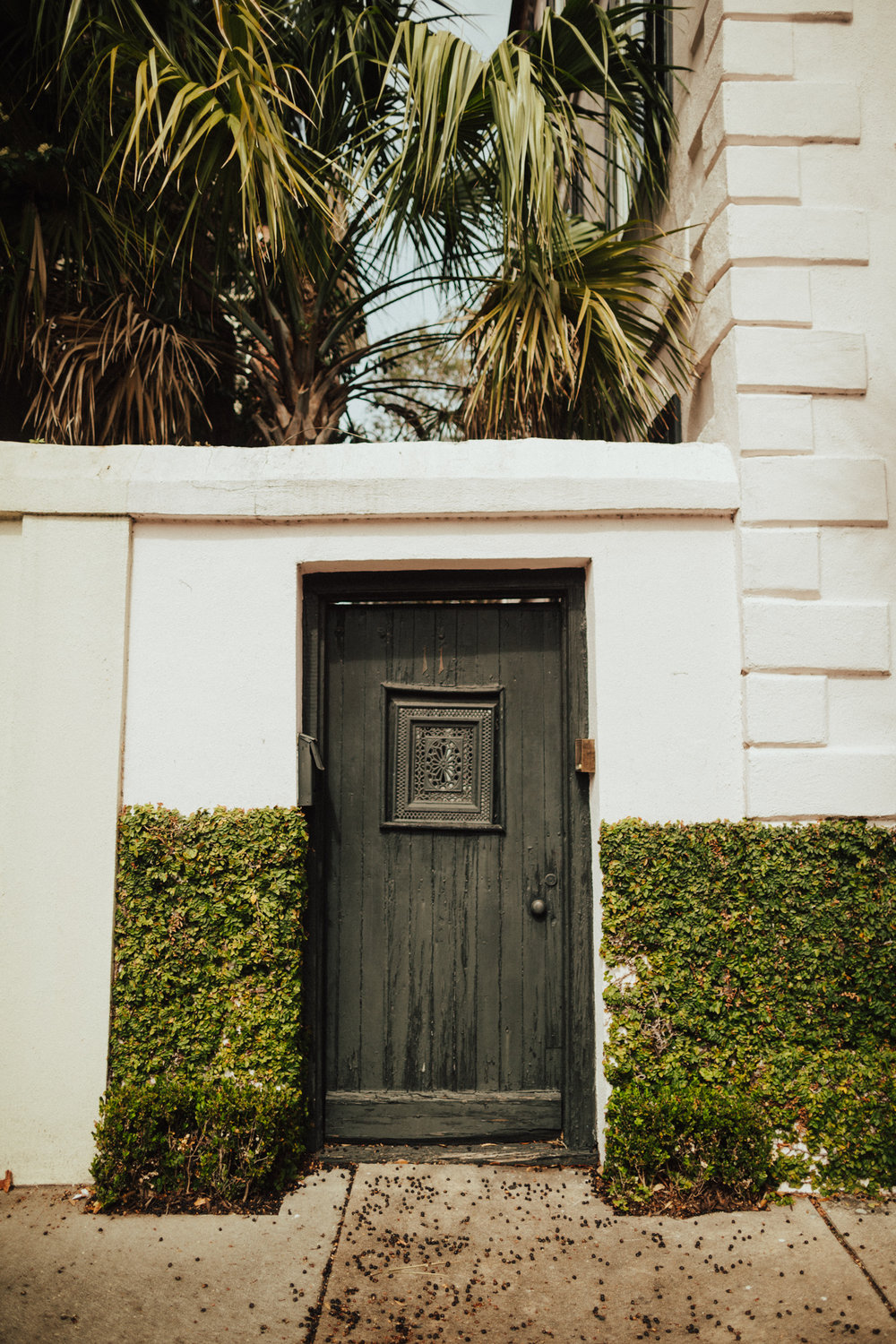Beautiful Doorways in Charleston South Carolina-33.jpg