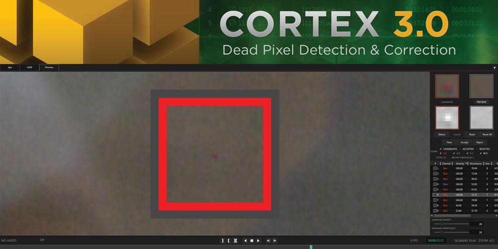 MTI-NAB-Cortex-DPD.jpg