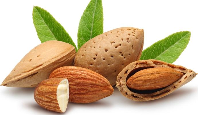 almonds+in+husk.jpg