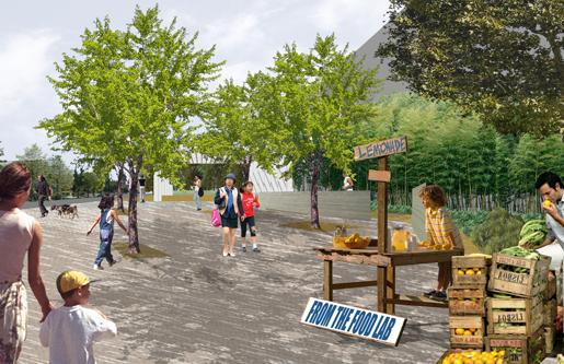 5-CommunityPavilions.png