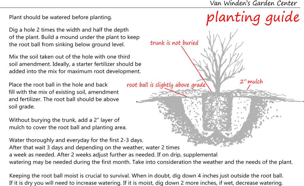 planting guide single.jpg