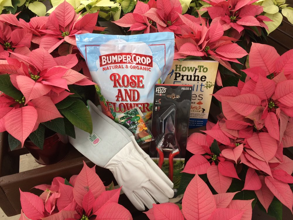 The Rose Gardener - Roses are notoriously tricky and those that choose to grow them are famously patient! Here are some gift ideas for the rosarians in your life.