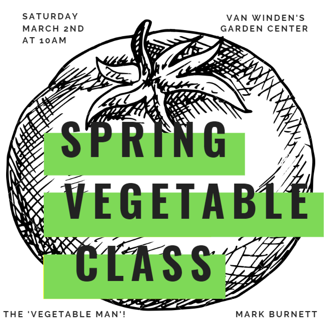 spring vegetable class 3.PNG