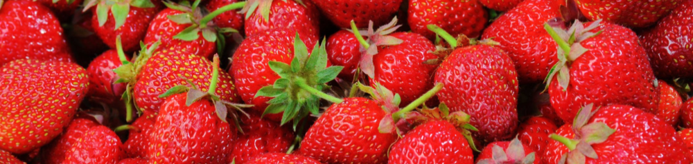 strawberry footer.PNG