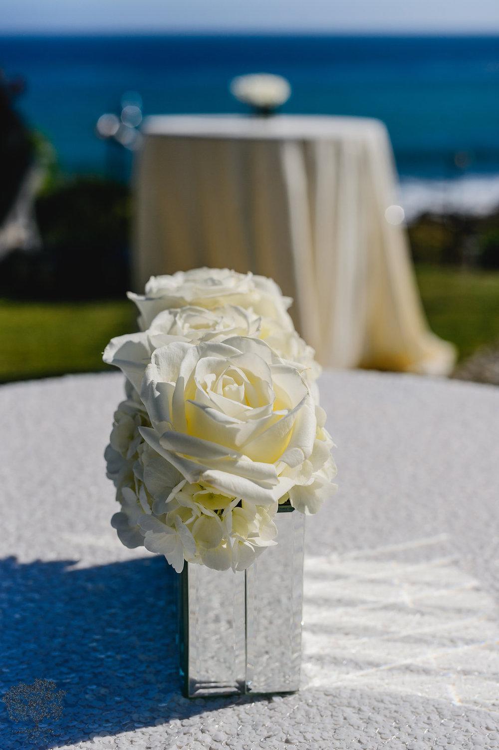 Bachelor Roses.jpg
