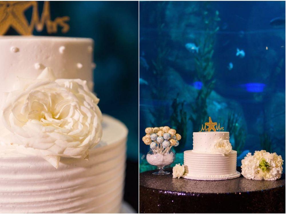 Aquarium Cake.JPG