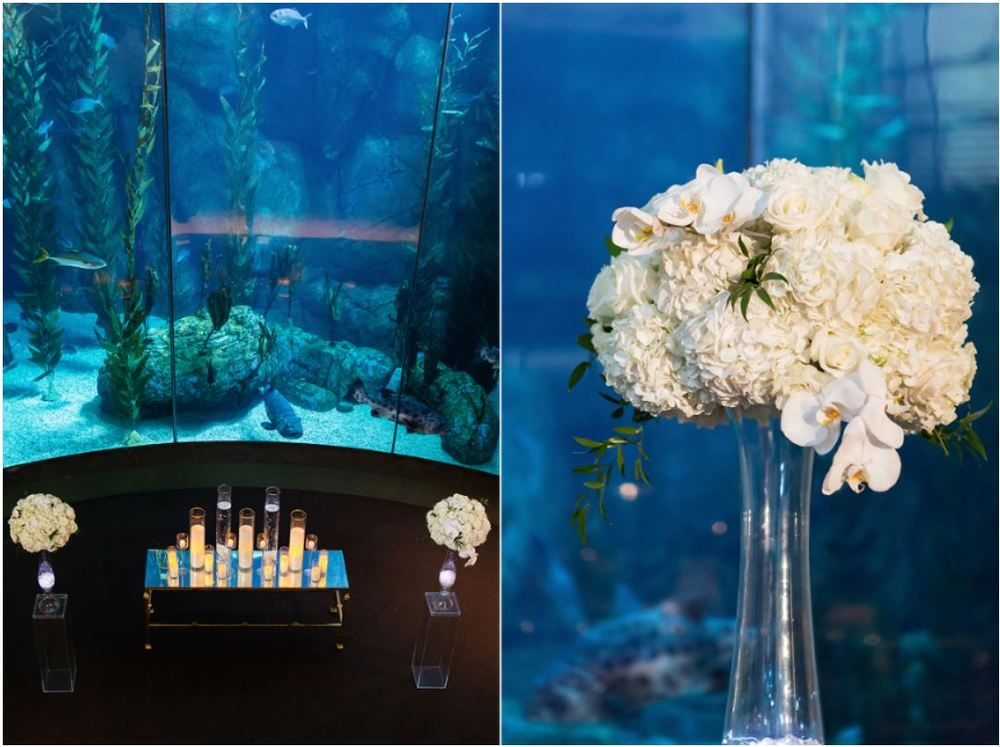 Aquarium Ceremony Decor.JPG