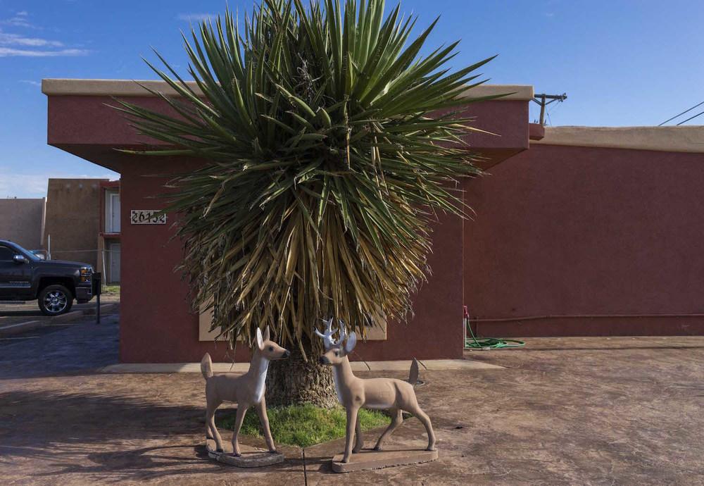 Deer Statues NM.jpg