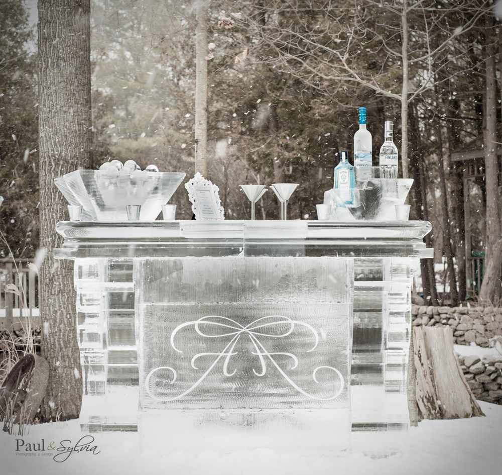 ice bar by ice culture for winter wedding photography by Paul and Sylvia.jpg