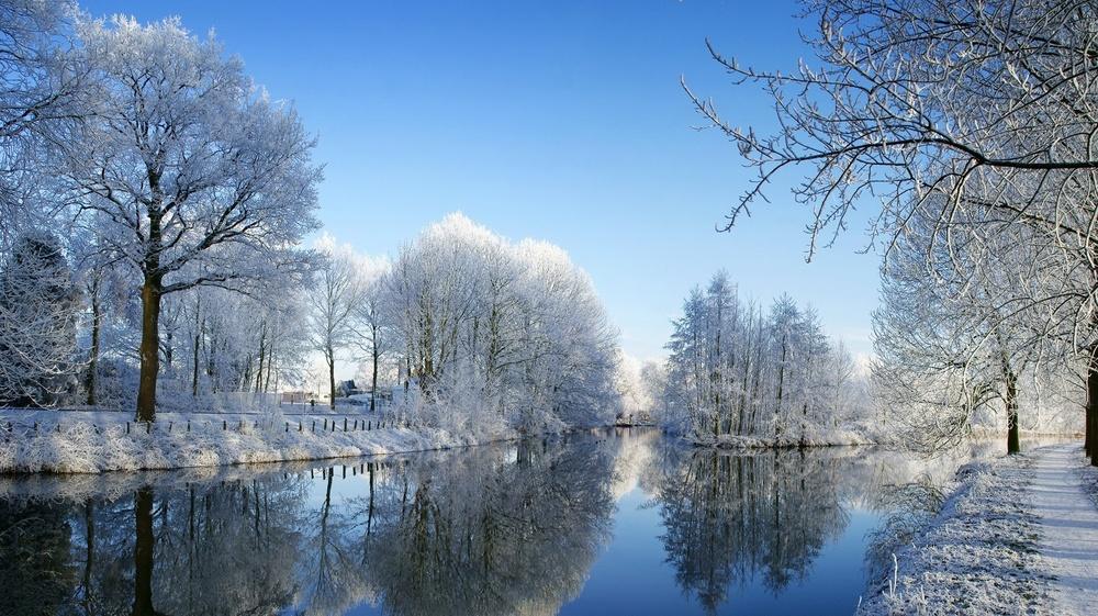 Winter-trees-winter-22173856-1920-1078.jpg