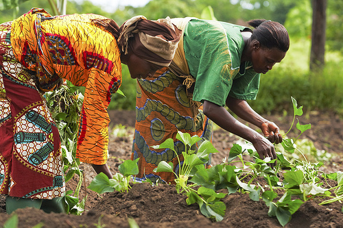 Image: Oxfam