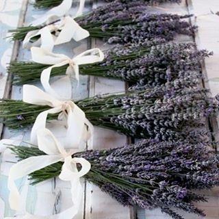 Lavender Bouquet inspiration of the day! #Lavender #Bouquet #Flowers #Inspirationof theDay #WeddingInspiration #WeddingPlanning #TheBridalCoach #KissesandCake #KissesandCakeWeddings   Image: thelane.com via prettypetals.typepad.com