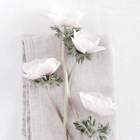 Simplicity. #Flowers #Inspiration #WeddingInspiration #WeddingPlanning #TheBridalCoach #KissesandCake #KissesandCakeWeddings   Image: coastal-style.blogspot.com.au