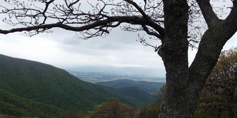 Shenandoah National Park Memories