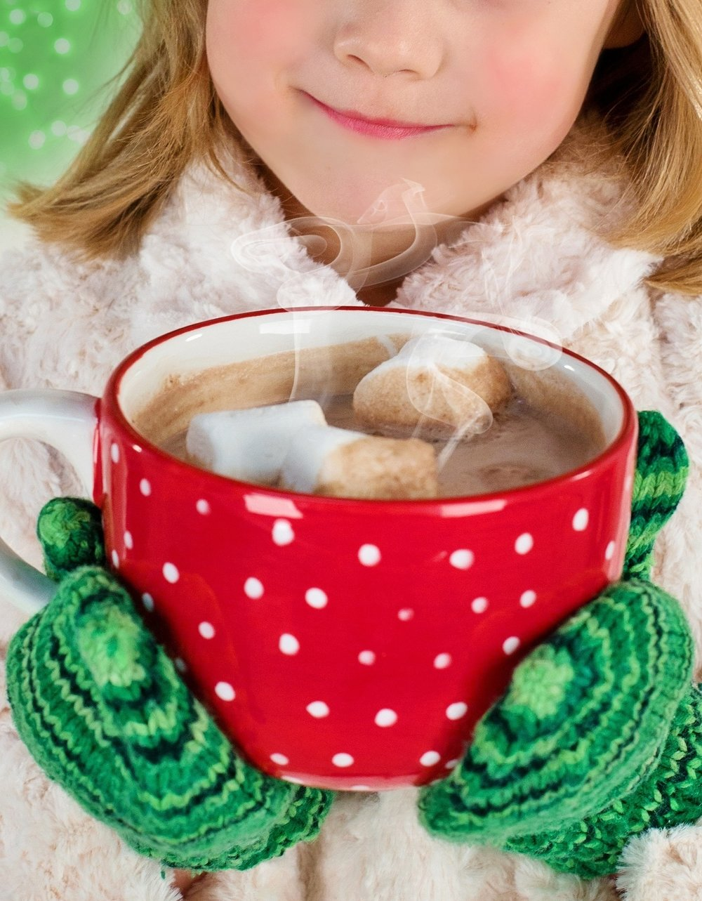 Hot Chocolate: A Hudson Valley Staple - By Katie Maus
