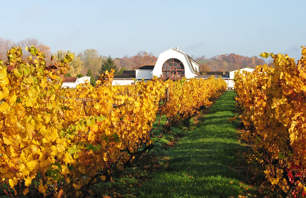 AutumnWinery2.jpg