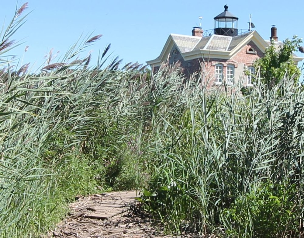 Saugerties Lighthouse trail with glimpse of house