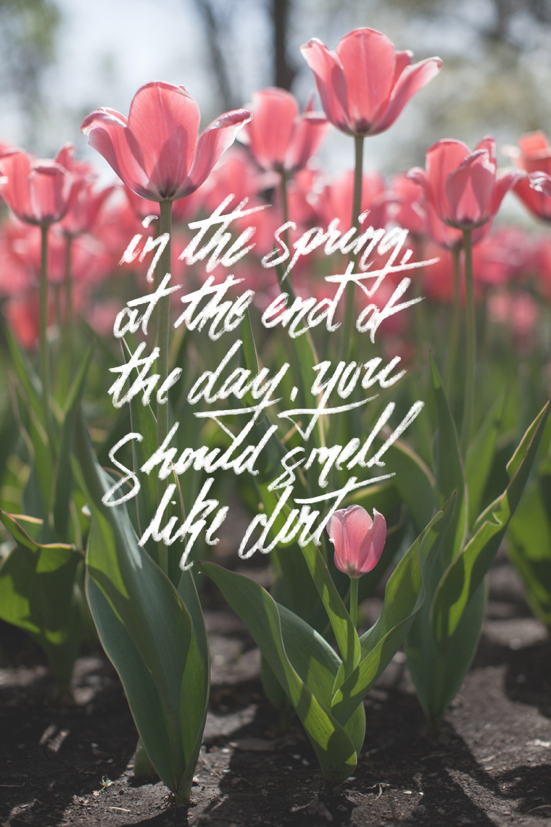 spring-tulip-lettering