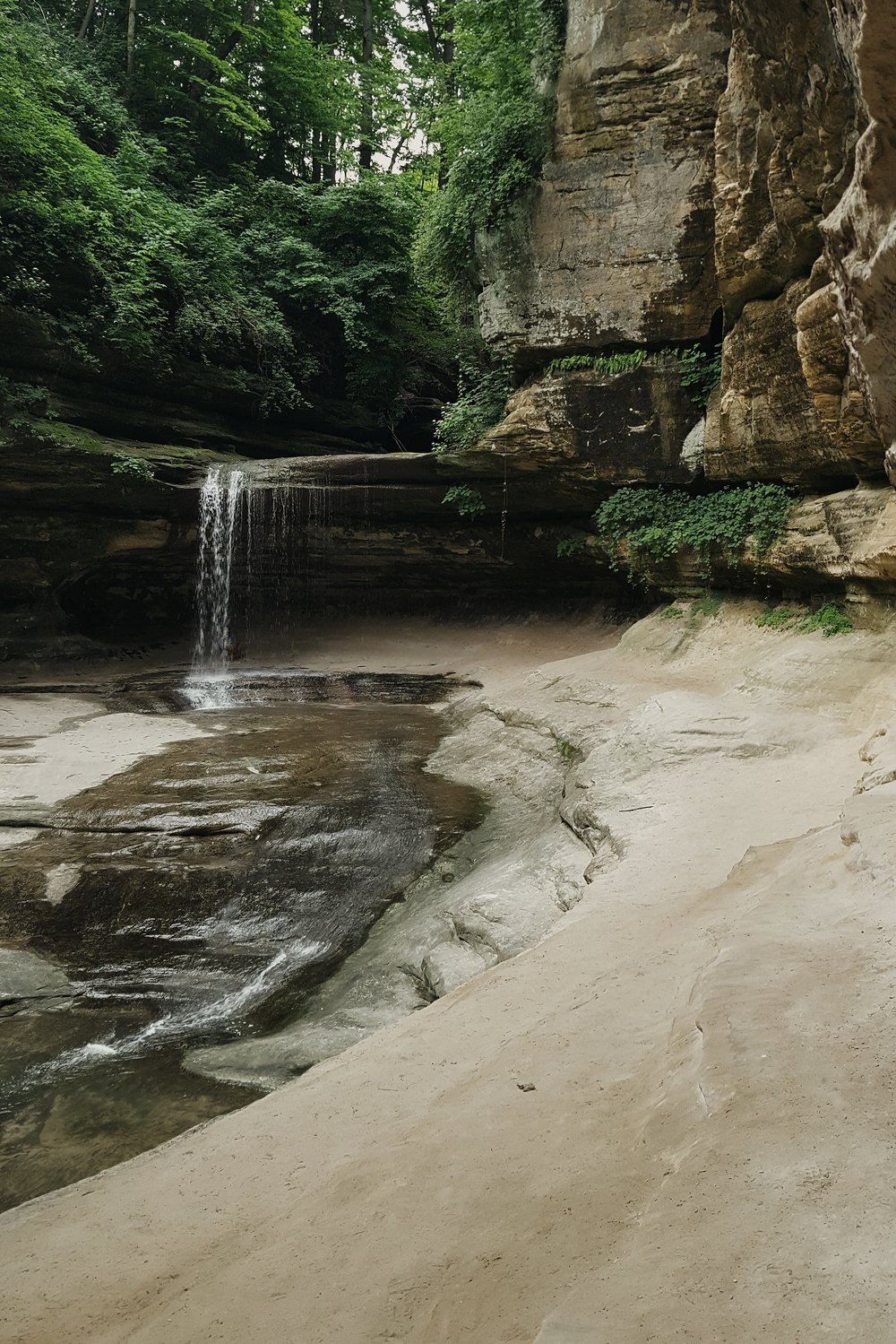 Explore the canyons at Starved Rock