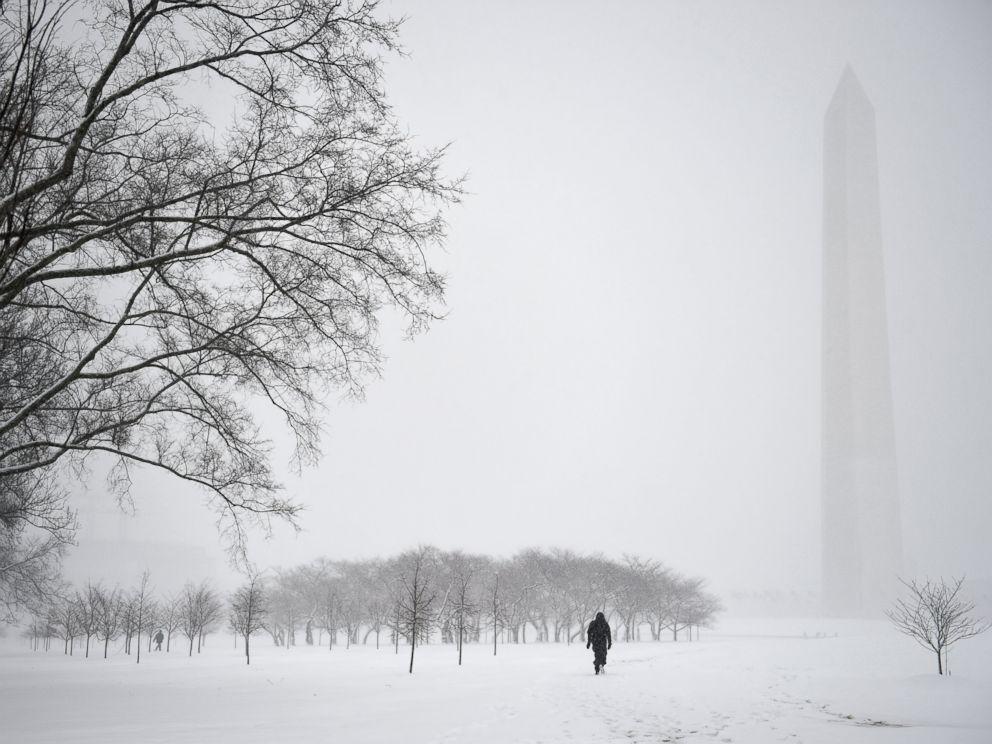 DC snow | champagne takeout