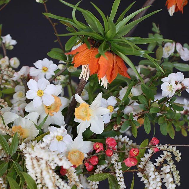 today was a crap day. creating this arrangement made it better. #flowerpower #springinavase #dsfloral #flowersofinstagram