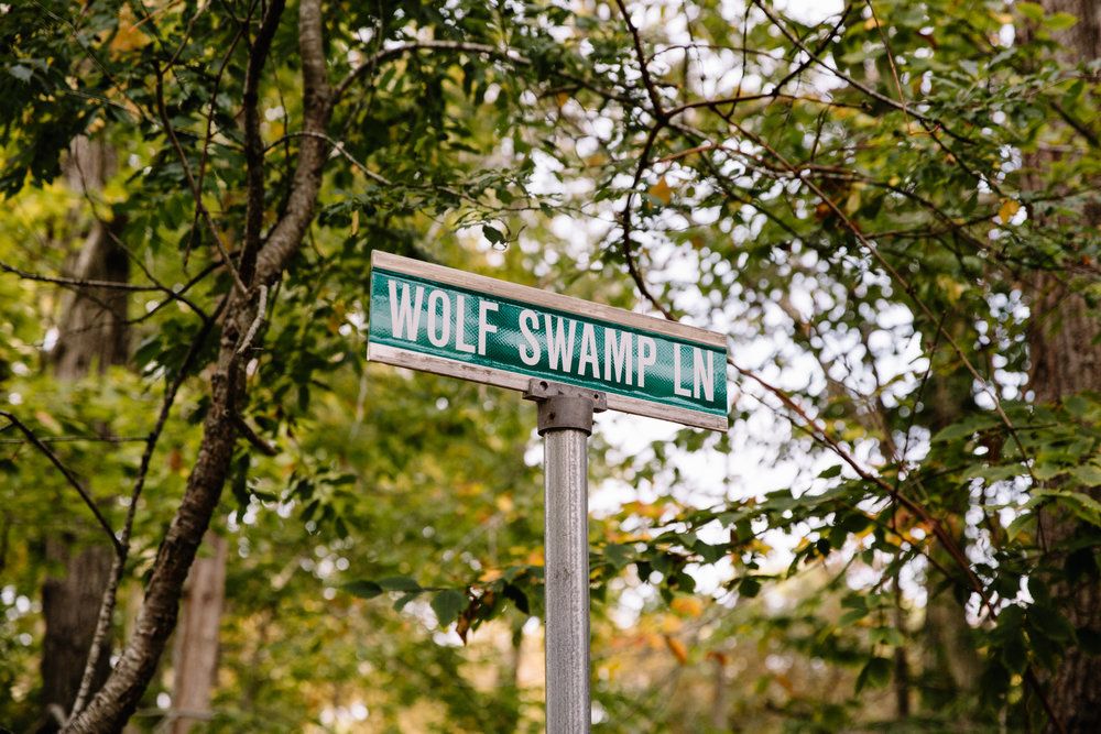 wolf swamp lane-1.jpg