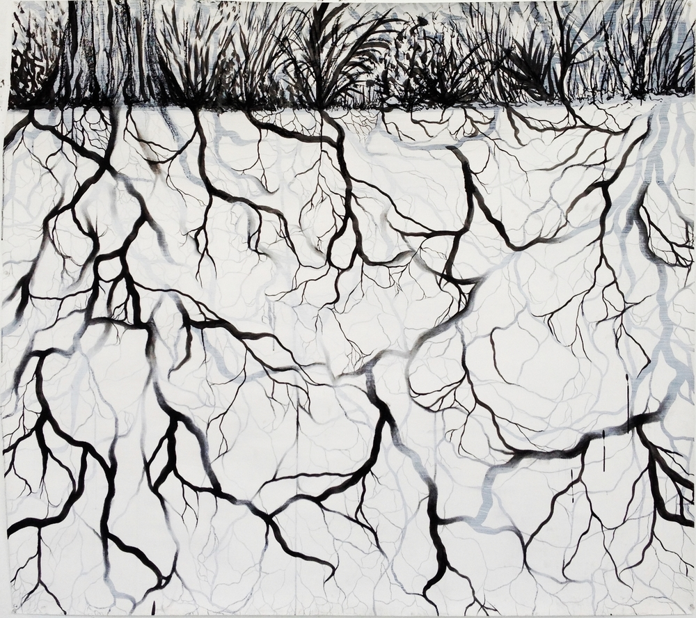 root system drawing.jpg