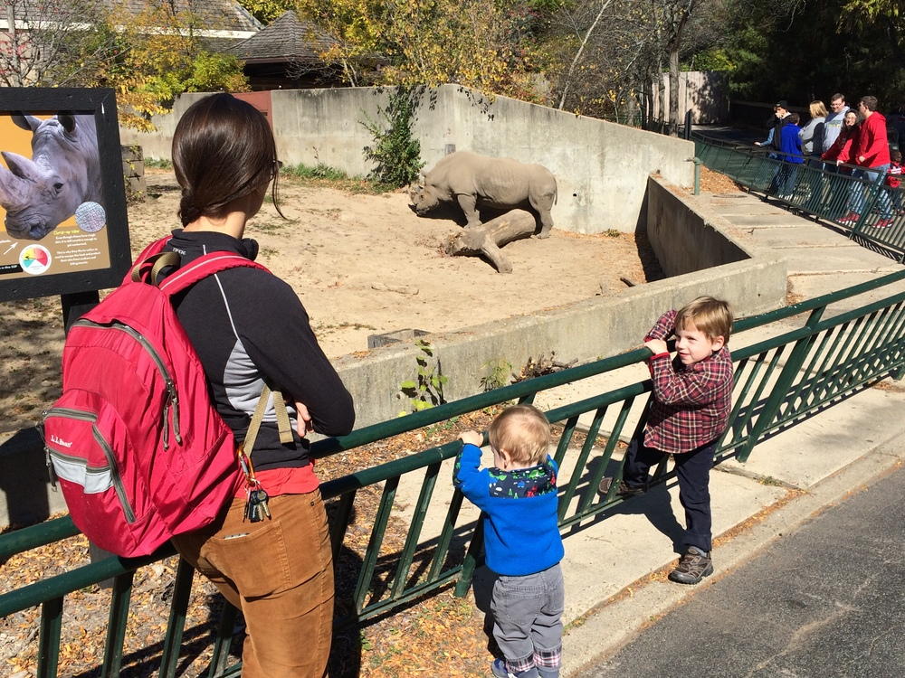 Ashley, Edge and Judah at Henry Vilas Zoo