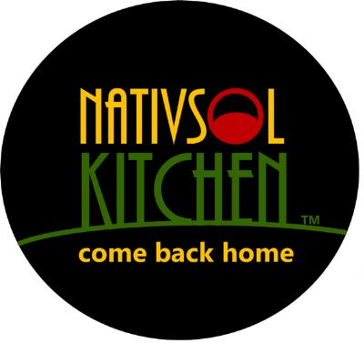 nativsol logo.png