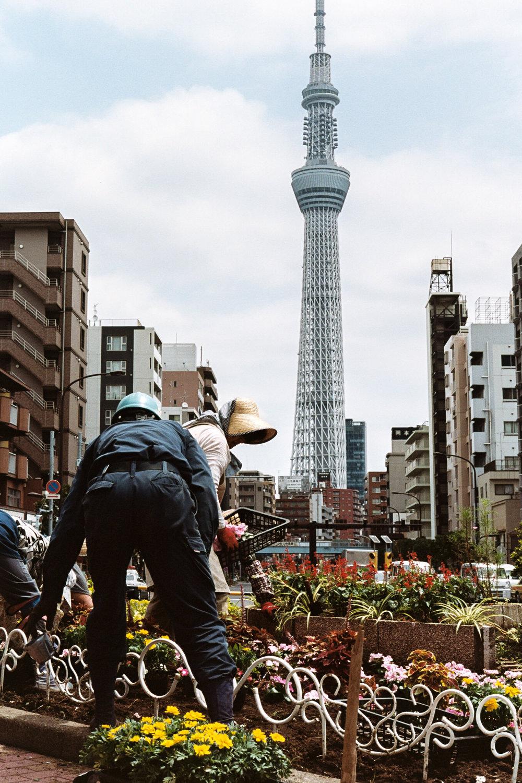 Tokyo6AA033A.jpg
